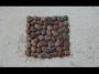Λάμψη Καφέ 30x30cm