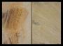 Πλακάκι Μέντα Φύση 40x60 cm